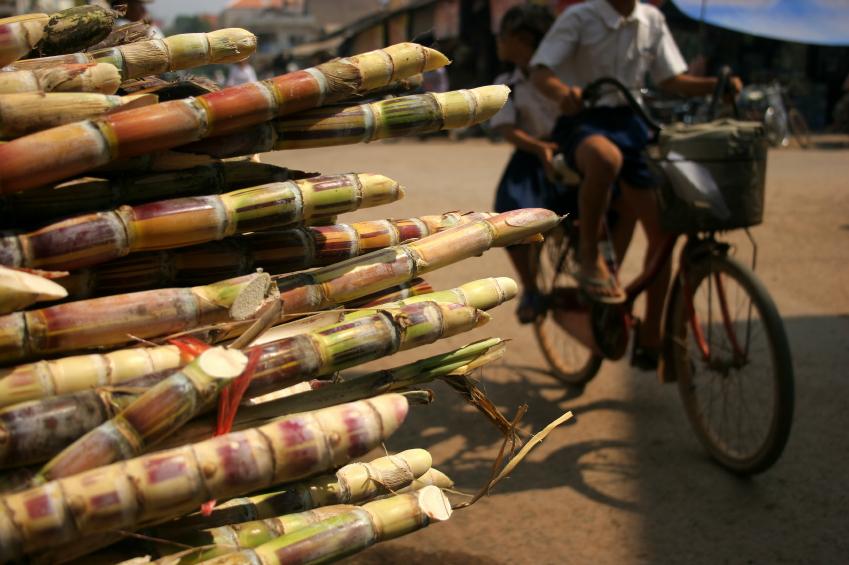 Socker-rör till salu i Kambodja